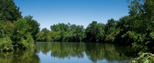 Lake Wabukayne _2012-4