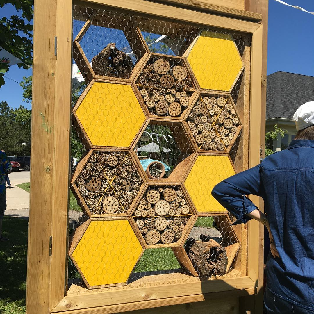 The newly installed Bee Hotel at Lake Wabukayne in meadowvalehellip